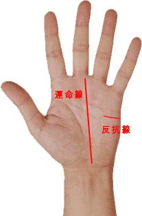 手相 運命線と反抗線