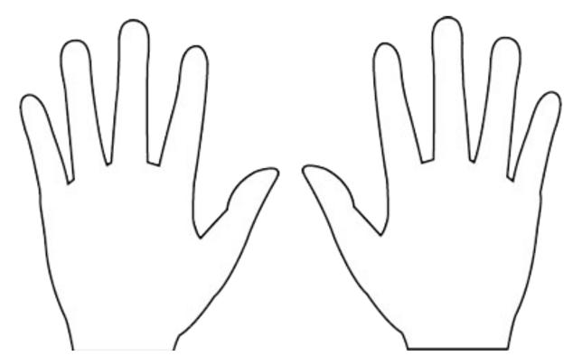 手相 左手 右手