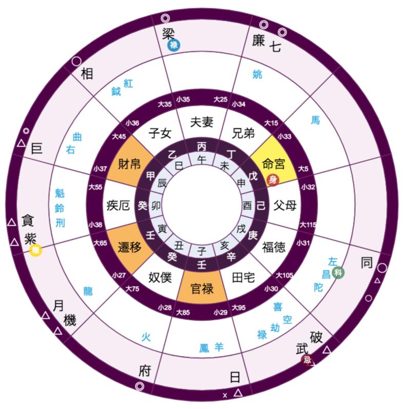 紫微斗数 命盤