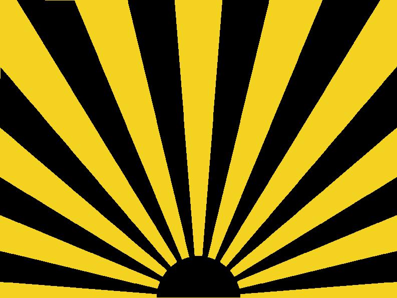 太陽星 紫微斗数